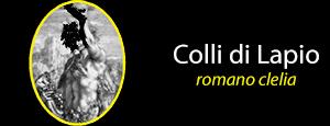 Azienda Colli di Lapio di Romano Clelia